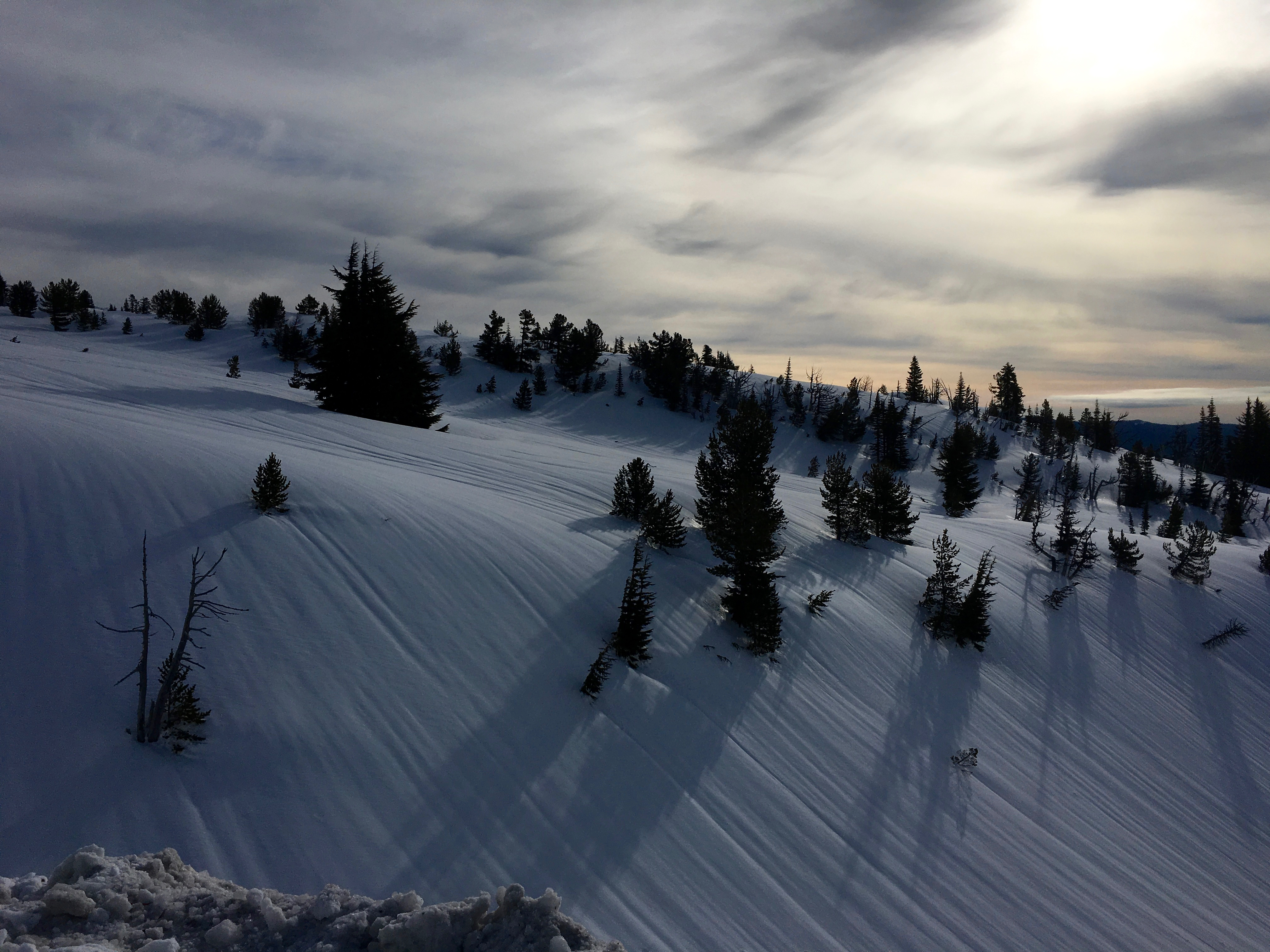 Wind Patterns in the Snow